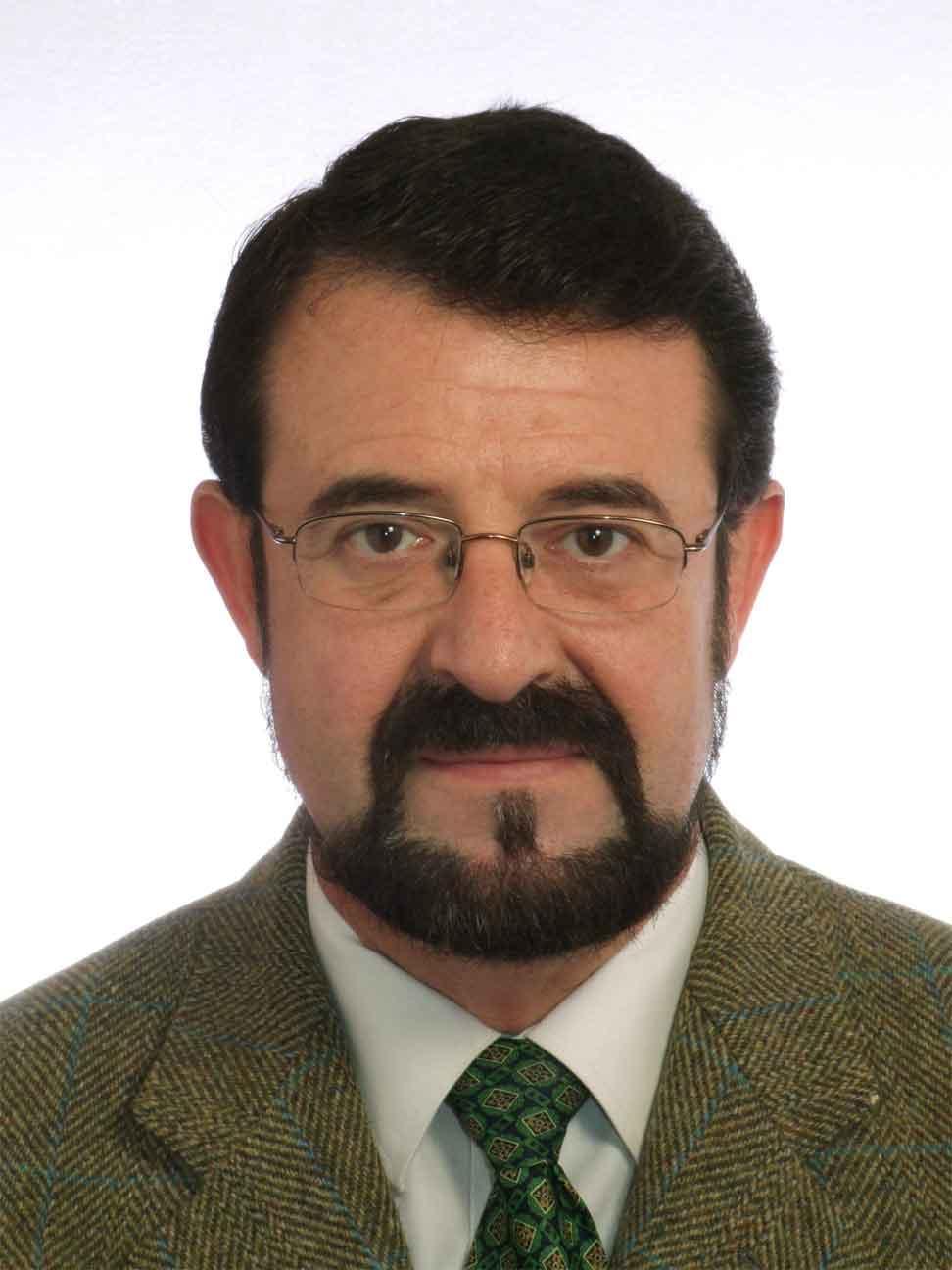 JOSÉ LUIS SOLDEVILLA LAMIKIZ