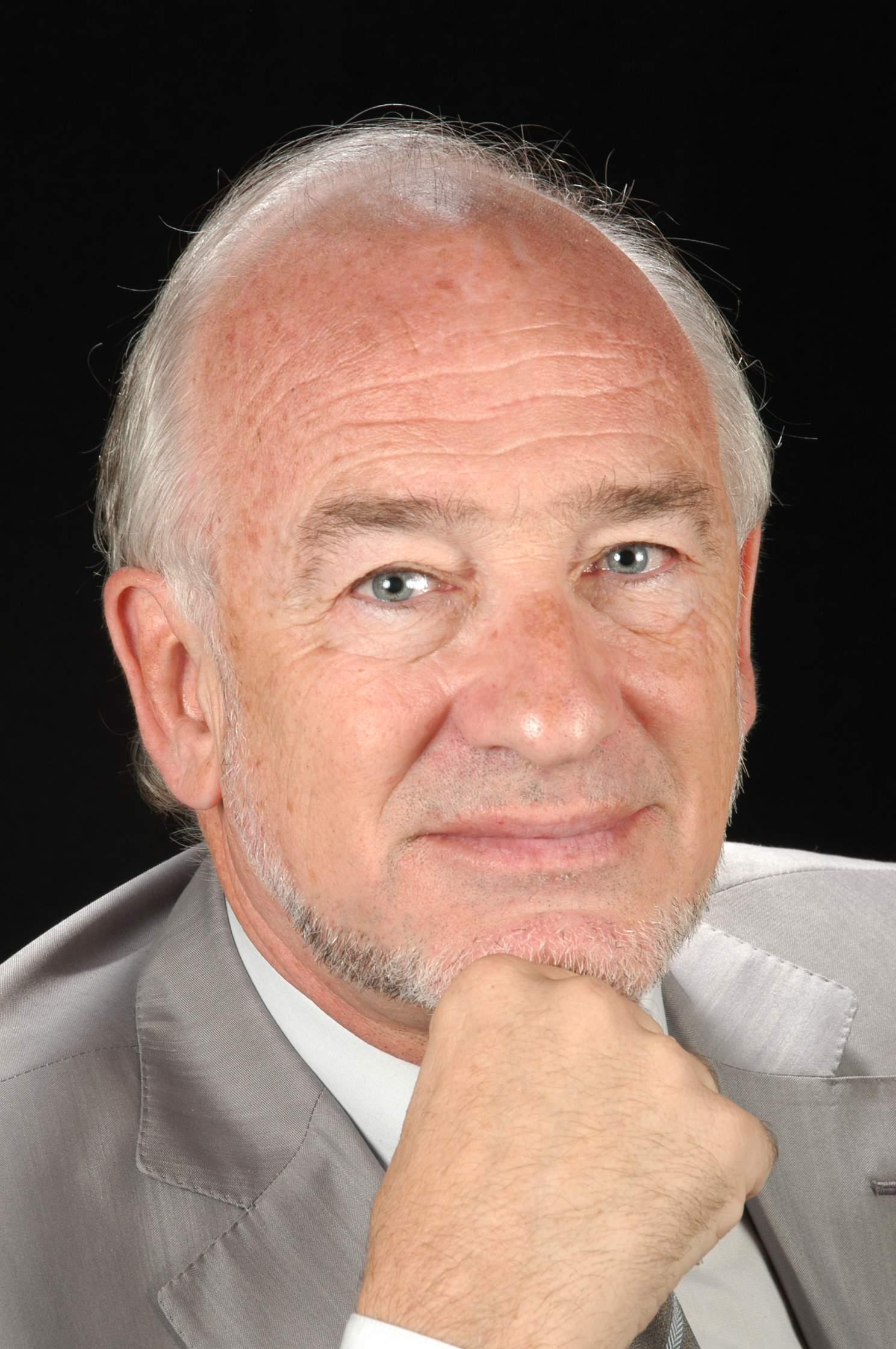 Sr. Arcadi Calzada Salavedra