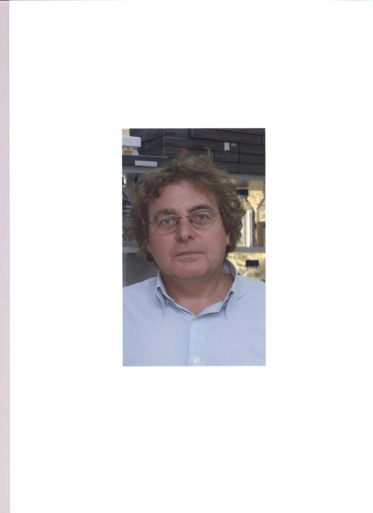 Dr. Isidre Ferrer Abizanda