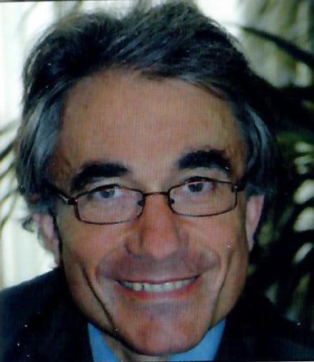 SR. FERNANDO ALBERICIO PALOMERA